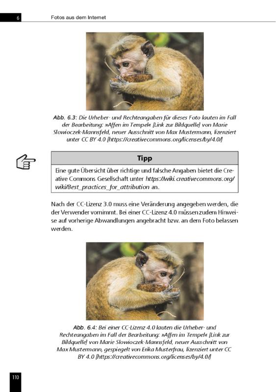 Fotos-rechtsicher-nutzen-im-Internet_Urheberrechtsbuch_Page110