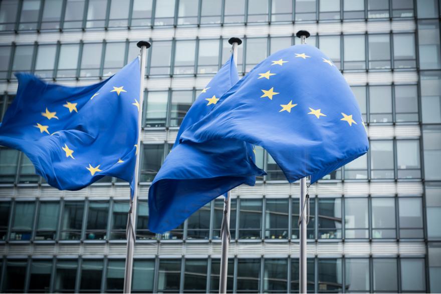 Bild EU Flaggen zu Urheberrechtsreform