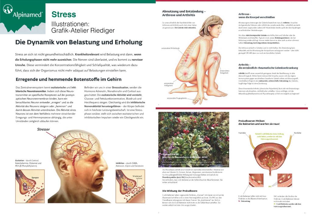 Medizinische Illustrationen zu Stress